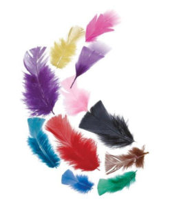 EC Tropical Feathers (20g pack)