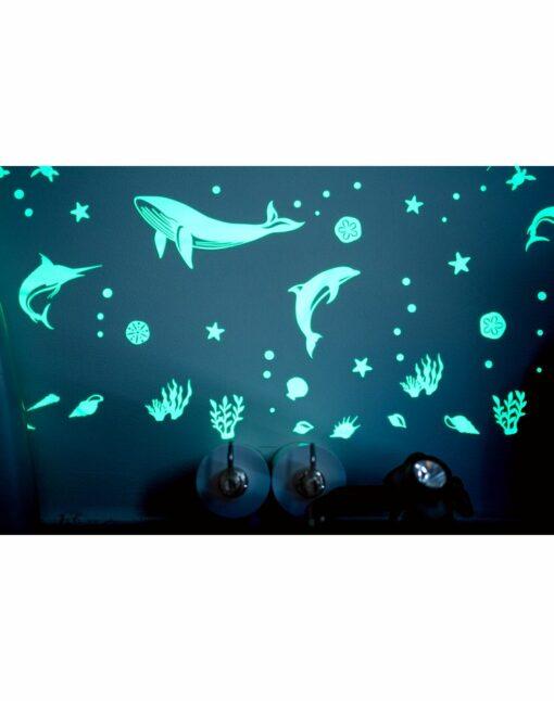 Gloplay_Sea_Animals_5