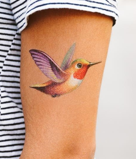 tattly_hummingbird_temporary_tatoo_chris_buzelli_main