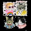 tattly_kids_temporary_tattoos_cat_club_set_berkley_illustration_2